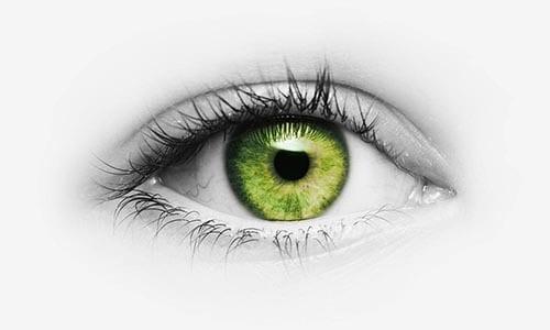 Oeil vert représentant le besoin de visibilité